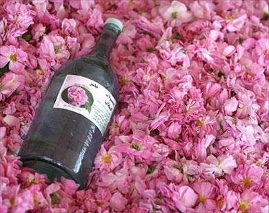 ماء الورد ،، وفوائده القيمة لجمالك